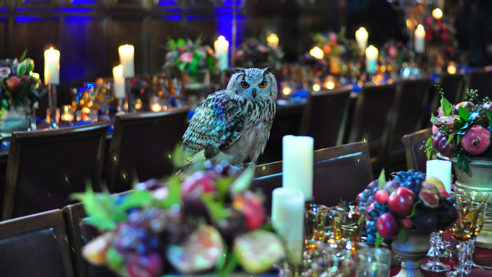 Harry Potter event at Middle Temple 2