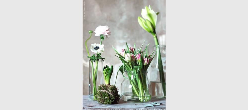 5_spring
